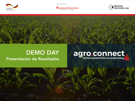 Fintechs facilitan MXN$20 millones en créditos para sector agropecuario durante  agro.connect