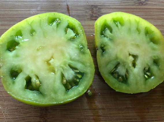homegrown green tomato