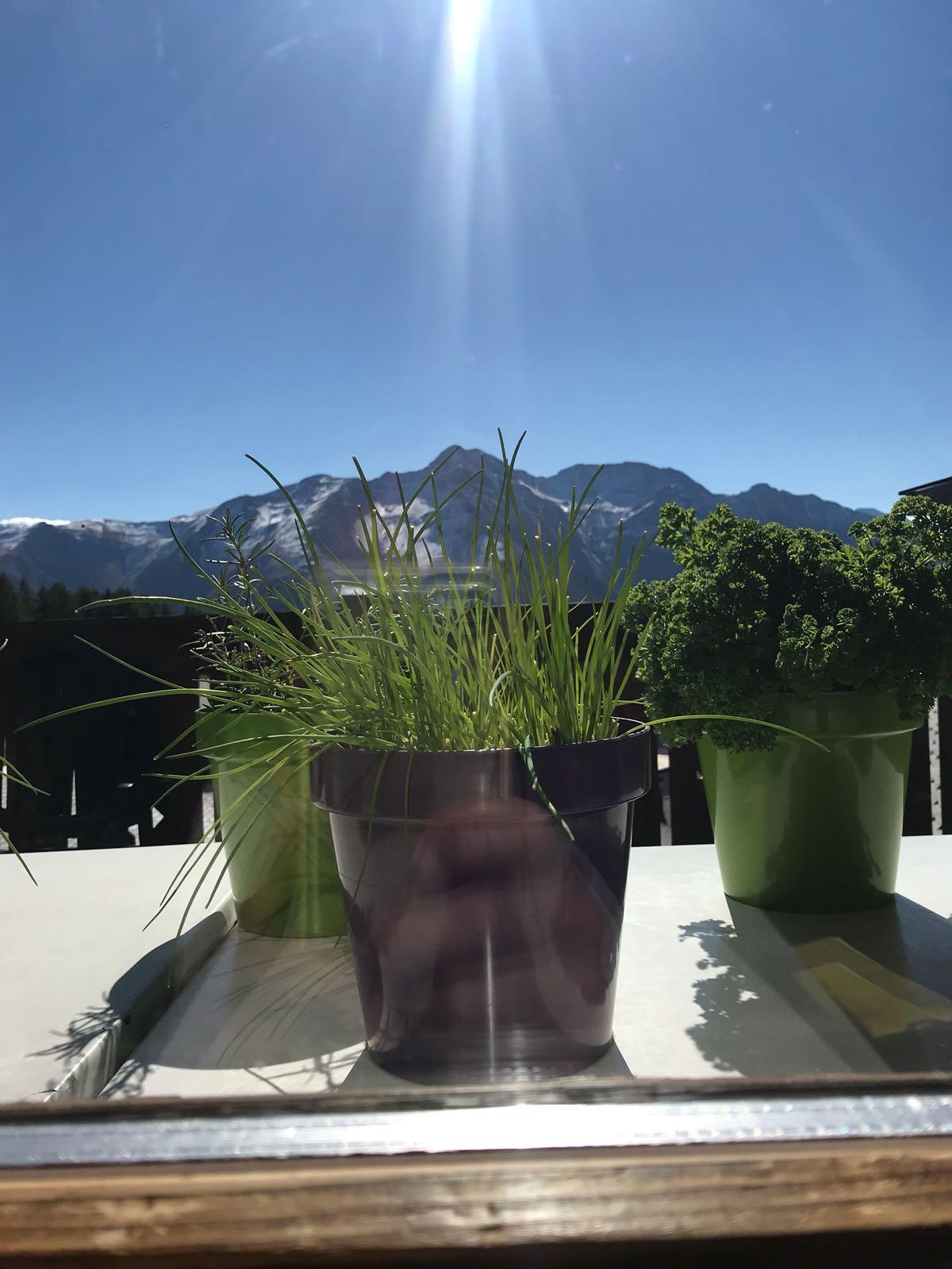 Berge Alp