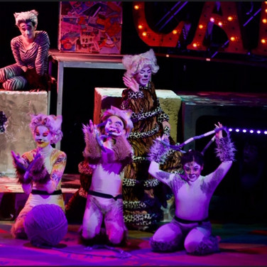 Oversized Yarn Ball - Cats the Musical