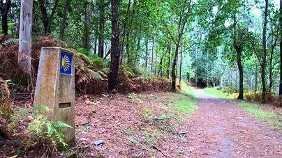 O Camiño de Santigo pasa preto de Alvarella