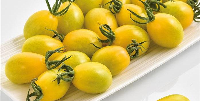 Mirado Lemon