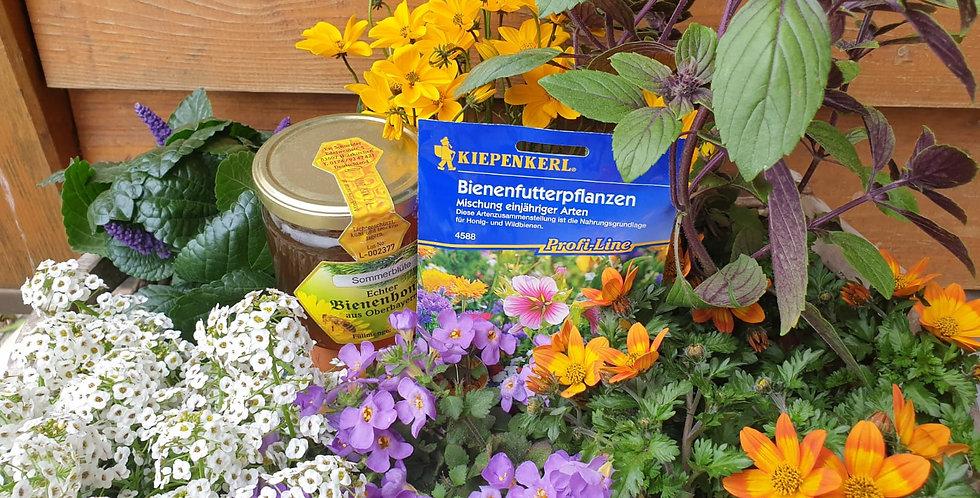 Bienen - Retter