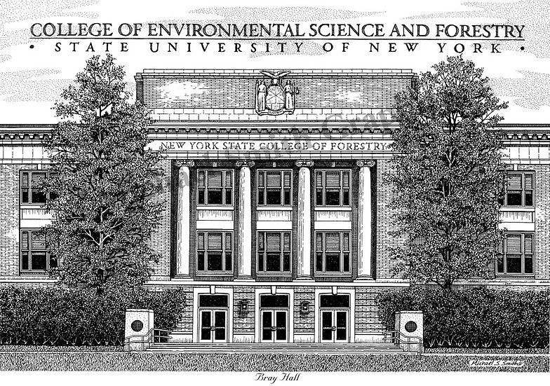 SUNY ESF Bray Hall art print by Michael Smith