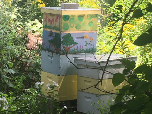 Why I chose Broadview Farm and Gardens for my bees.