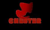 Новейший логотип - поменьше 3.png