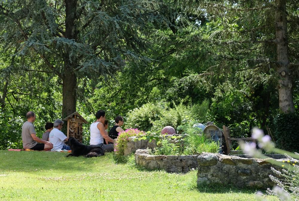 yoga sous les arbres