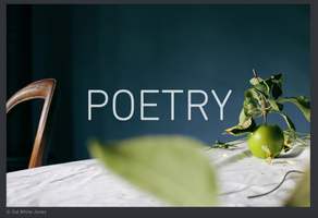 Shutter Hub Publication Poetry