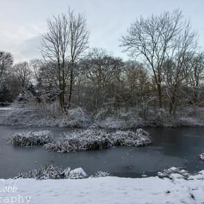 Ice ponds 2