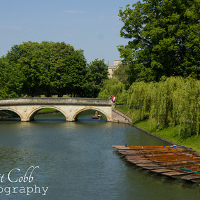 Over the cam