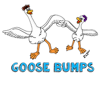 goose bumps clothing.png