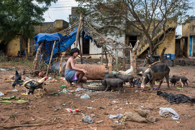 La vie s'organise au milieu des poubelles, rien n'est prévu pour le traitement des déchets. L'immense décharge à ciel ouvert assure en partie les ressources de la communauté.