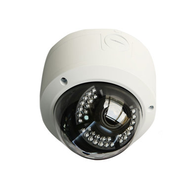 D-650 Vandal-proof Dome Camera