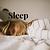 Introduction to Sleep