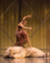 Refugia_ Guthrie Theater 1
