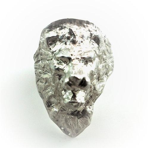Löwenkopf/ Lion´s head