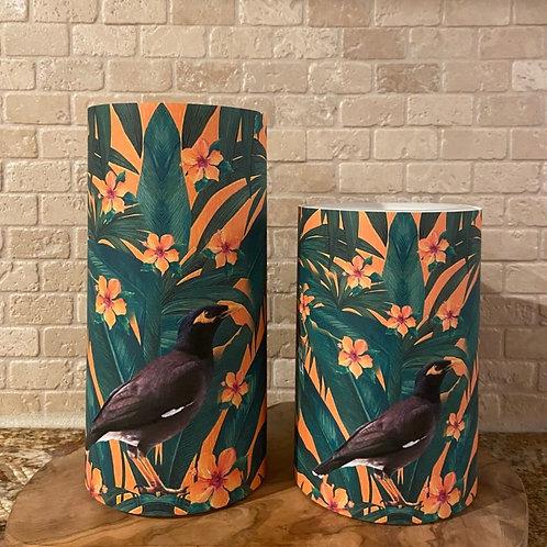 Tropical Myna, Set, Flameless Candle, 4x6, 4x8, Keleka Designs