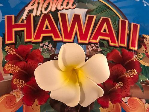 Hawaiian Plumeria Hair or Hat Clips