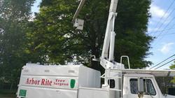 Tree Service Oxford, AL