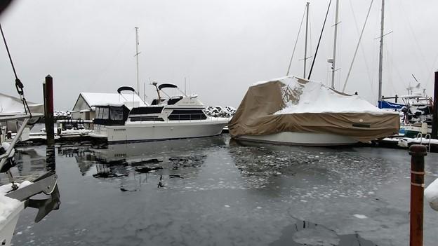 Bonnie Luterbach Windy Stormy Day