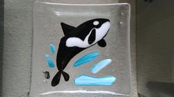 FG Killer Whale plate 20210128_131619