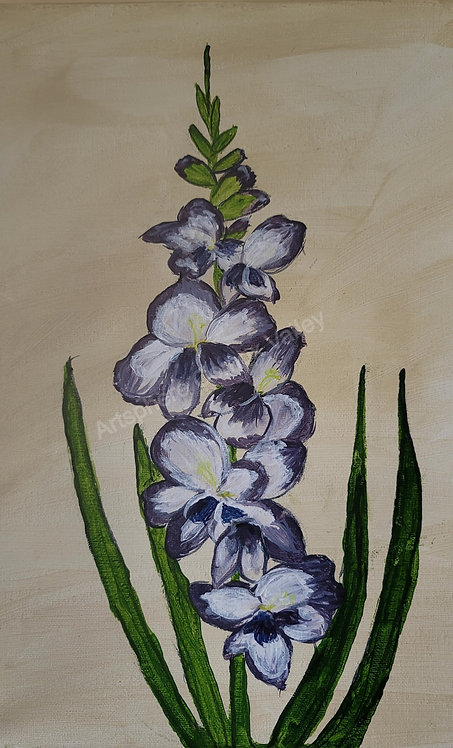 Purple Gladioda