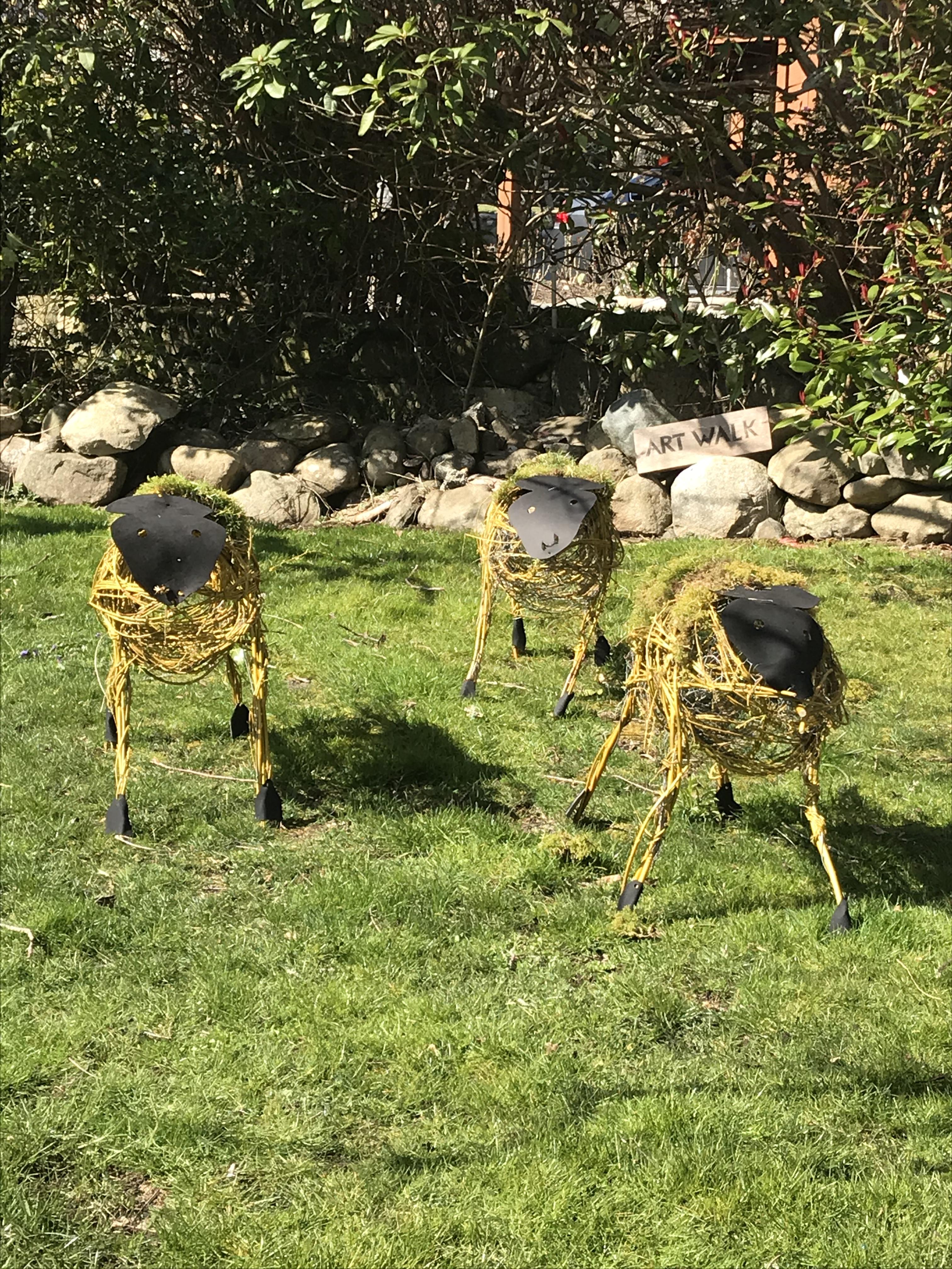 Lambs in Garden