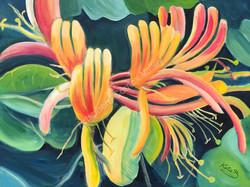 Honeysuckle - Painting