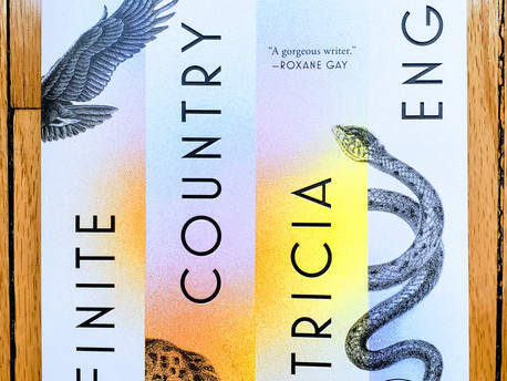 Infinite Country by Patricia Engel