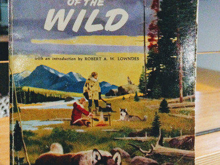 The Call of the Wild- Jack London