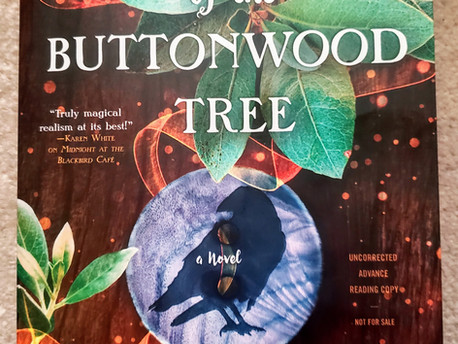 South of the Buttonwood Tree by Heather Webber