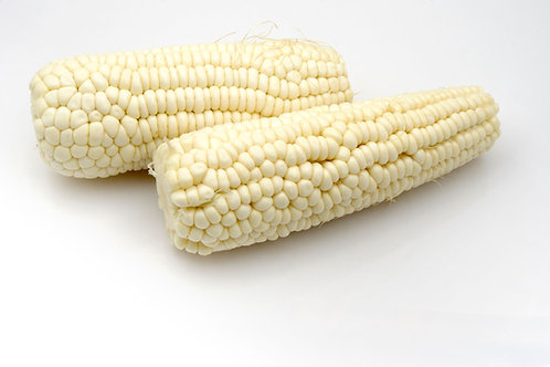 Country Gentleman Heirloom Sweet Corn 20 Seed Garden Pack -Supply is Limited