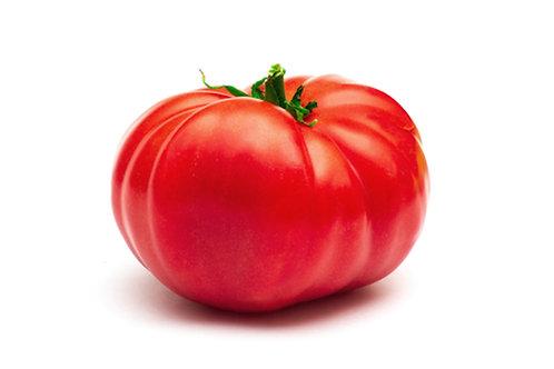 Giant Belgium Tomato Vegetable Seeds Non GMO