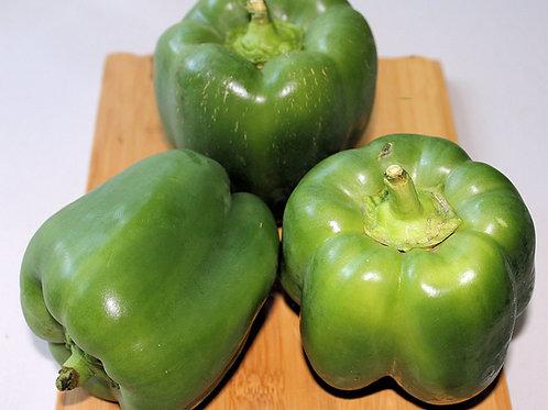 Keystone Resistant Giant Pepper Seeds
