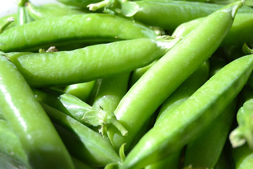 100 Seeds Wando Sweet Shelling Pea- Heirloom-Natural Vegetable Seed