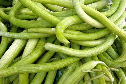 20 Premium Seeds -Armenian Yard Long Cucumber