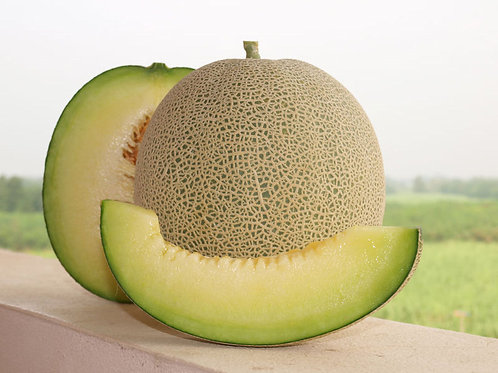 Rocky Ford  Cantaloupe Seed Vegetable Seeds