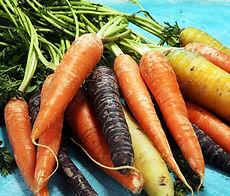 rainbow carrot pond 5 lisence 8-2018.jpg