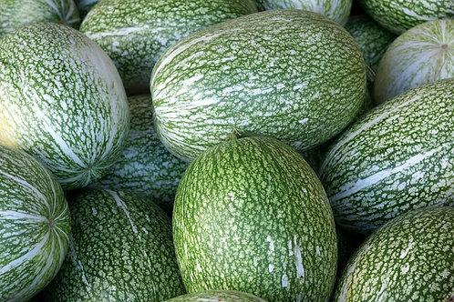 Carribean Gourd-Melon 5 Seeds- Cucurbita ficifolia Rare Heirloom