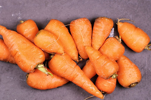 Chantenay Carrot  Seeds Small Size - Big Taste! 100 Garden Seed Pack
