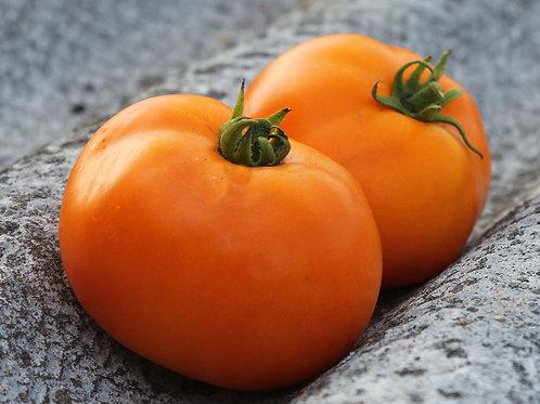 Amana Orange Heirloom Tomato Seeds OP NON GMO