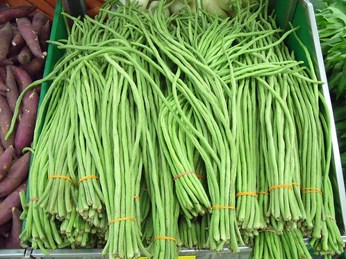 Yard Long Bean 10 Premium Seeds