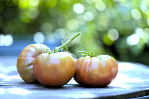 Vintage Wine Heirloom Tomato Seeds