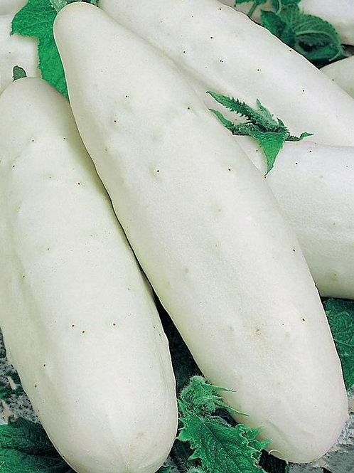 White Wonder Cucumber Heirloom Garden Seeds