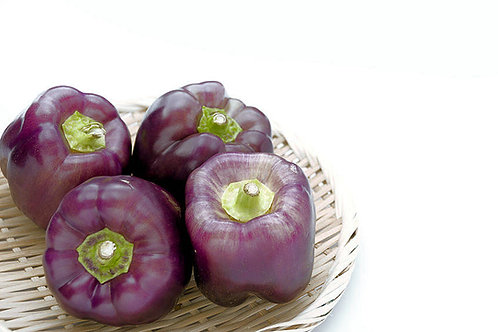 Purple Beauty Sweet Pepper Vegetable Seeds