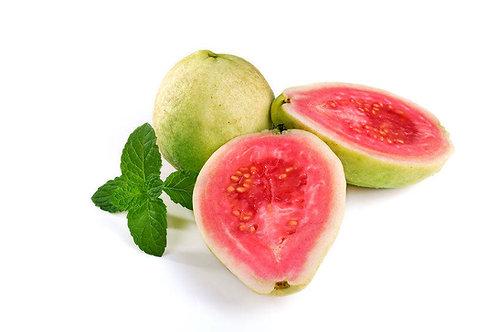 Psidium guajava Apple Guava Seeds