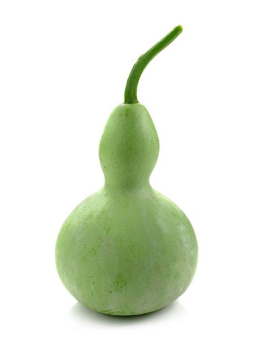 Lagenaria siceraria Bottle Gourd Calabash 10 Seeds Limited Supply