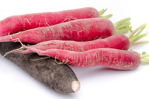 100 SEEDS Fire Candle Radish- Non Gmo- Spicy Flavor