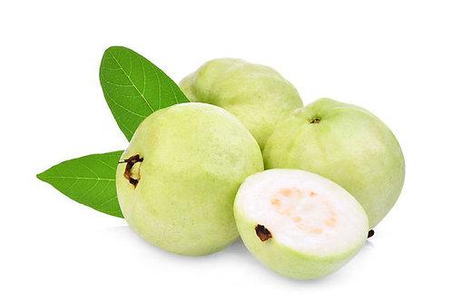 Psidium guajava Allahabad safeda Tropical Fruit Tree Seeds