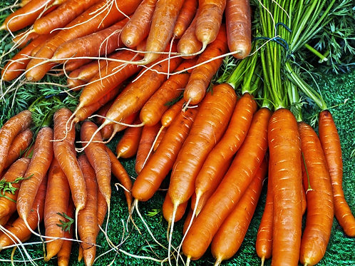 Autumn King Carrot Seeds= NON Gmo 100 Seeds- gourmet heirloom vegetable, natural
